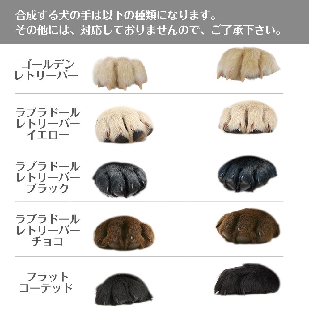 合成する犬の手は こちらの種類になります