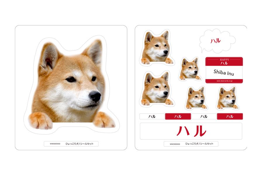 柴犬:手の色(ベージュ):シールカラー(レッド&ホワイト)