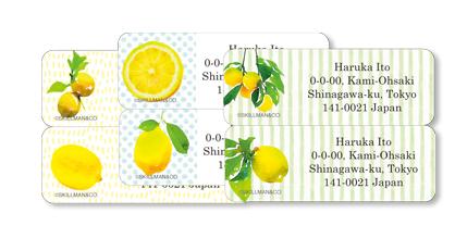 クラシカルタイプ レモン&ストライプ