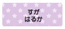 パターンお名前シール(アイ スター紫
