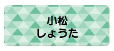 パターンお名前シー トライアングル緑