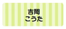 パターンお名前シール( ボーダー黄緑