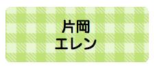 パターンお名前シール( ギンガム黄緑