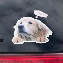 レトリーバー×ディアカーズコラボ うちの子の写真でつくる オーダーメイド ひょっこり犬シールセット