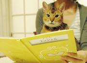 写真入り名入れ絵本お仕立券 -オリジナル-